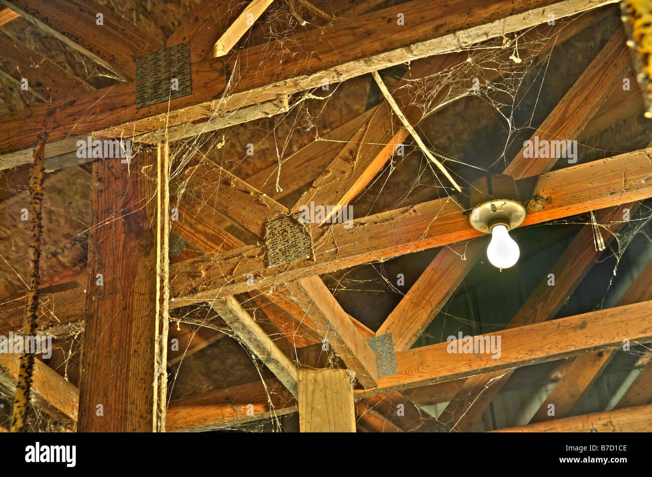 Cobwebs Amp Light Bulb In Attic Stock Photo Royalty Free