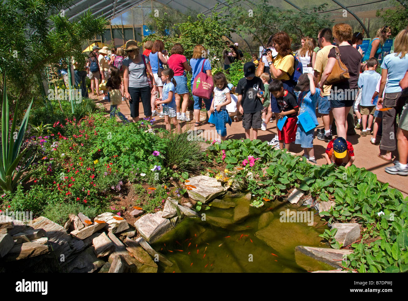 Usa Arizona Phoenix Desert Botanical Gardens Visitors In Butterfly Stock Photo 21816302 Alamy