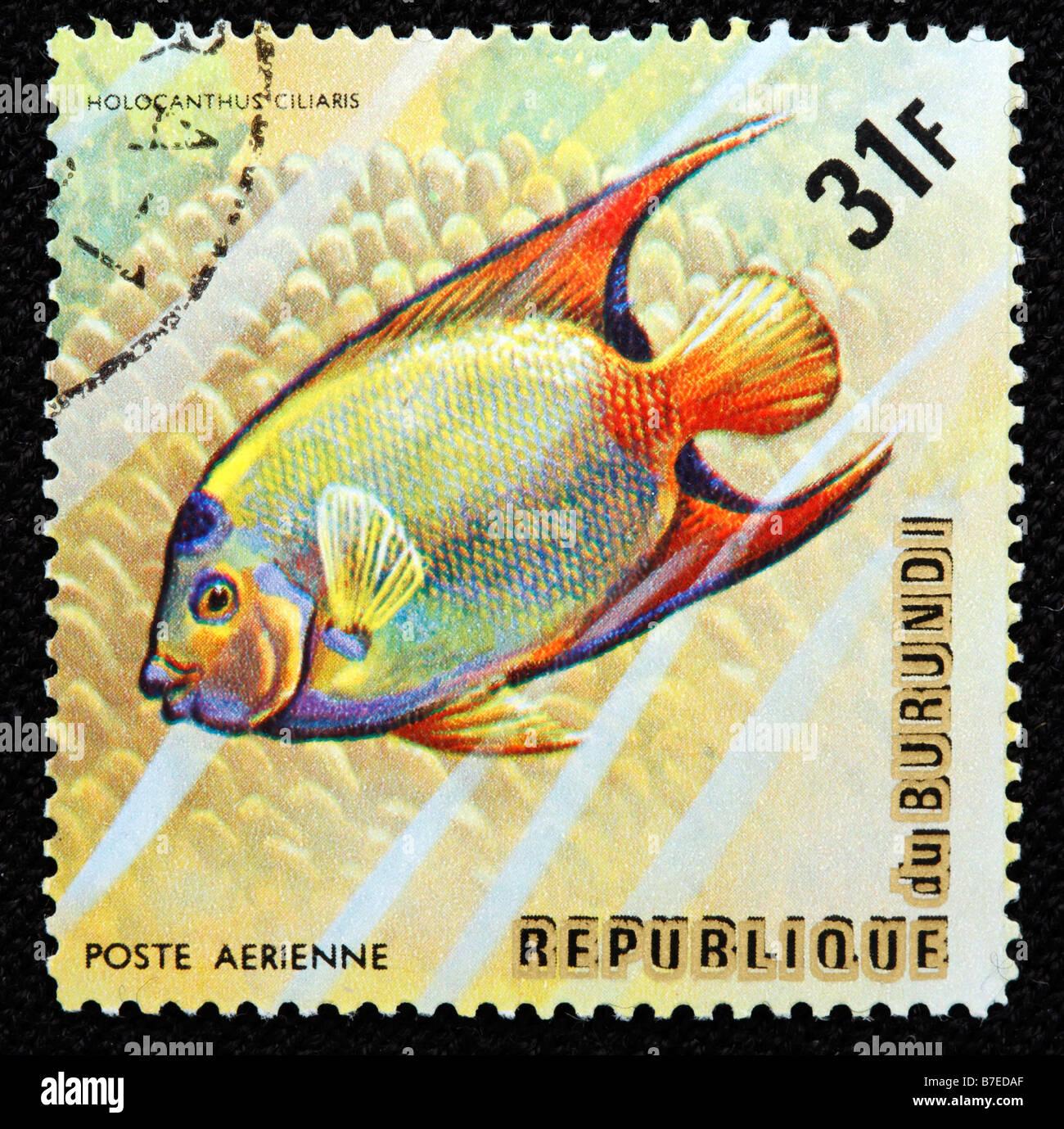 Queen angelfish holacanthus ciliaris atlantic ocean for Fish symboled stamp