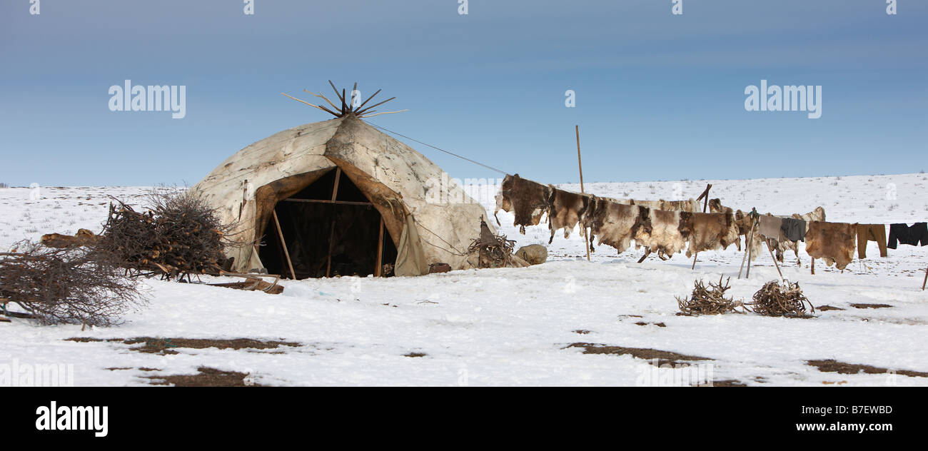 Yupic tent and reindeer skin Kanchalan located in the Chukot Autonomous Region Siberia Russia & Yupic tent and reindeer skin Kanchalan located in the Chukot ...