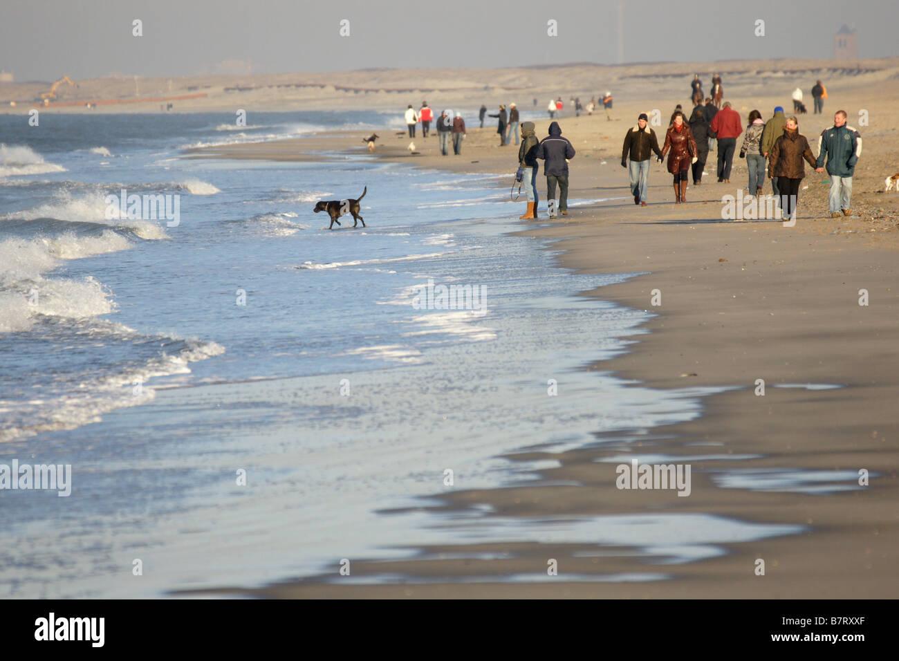Crowd Many People Walking Hoek Van Holland Beach Seashore
