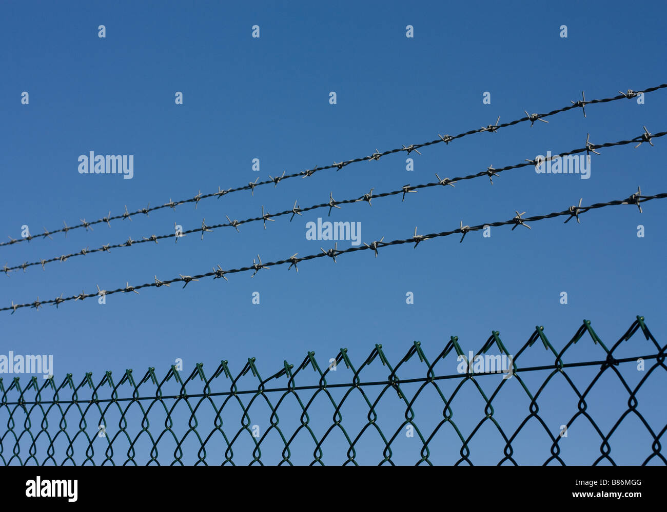 Barbed Wire Strips - Wire Data •