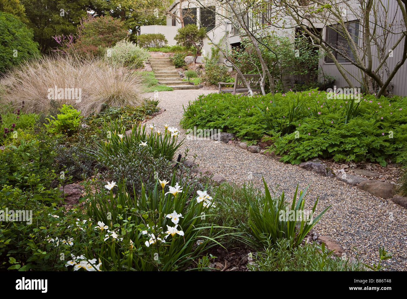 Gravel Path Leading To Patio In Drought Tolerant California Native Plant  Garden   Stock Image