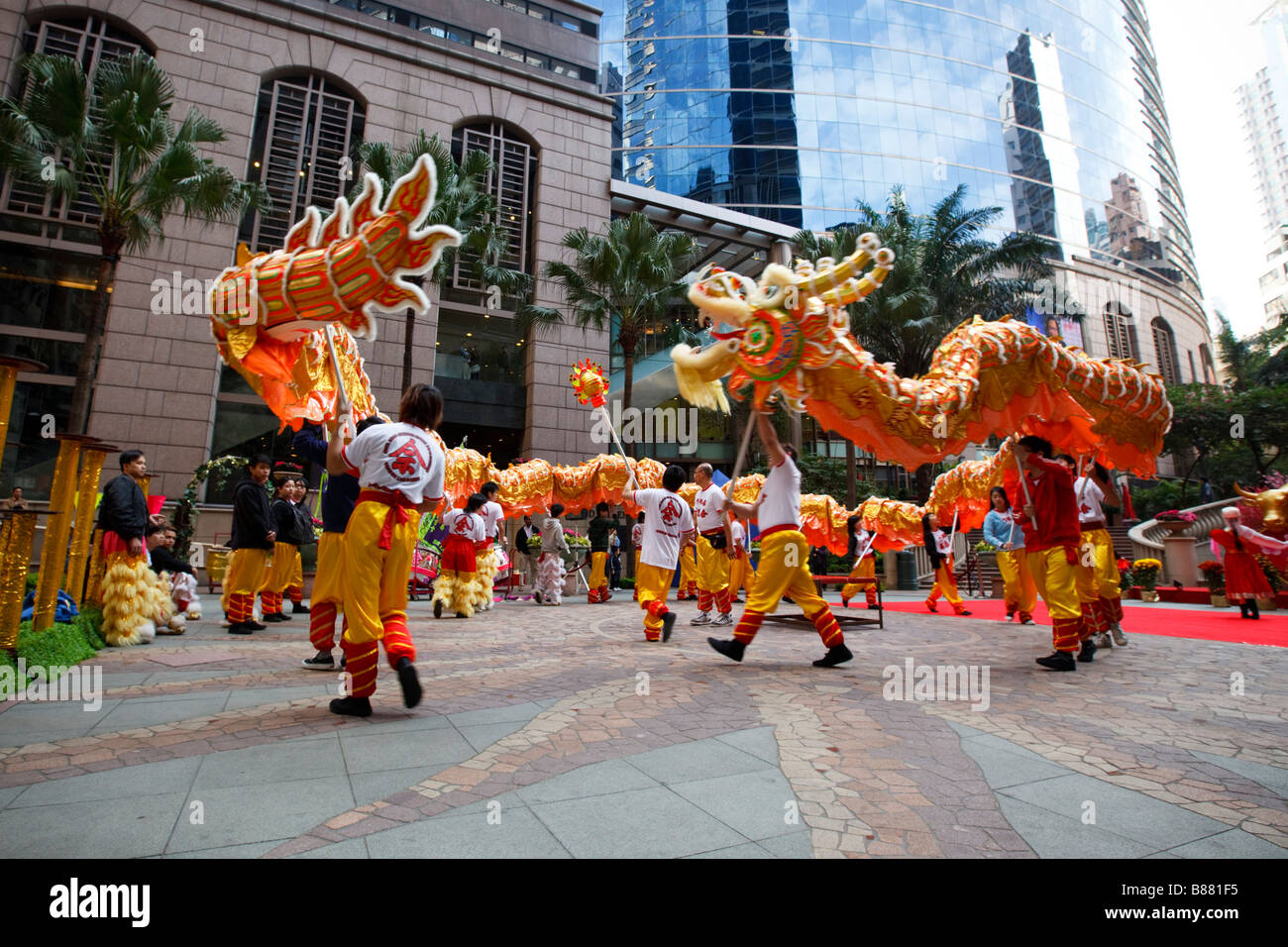 Uncategorized Chinese New Year Dance chinese dragon dance to celebrate the lunar new year in central hong kong