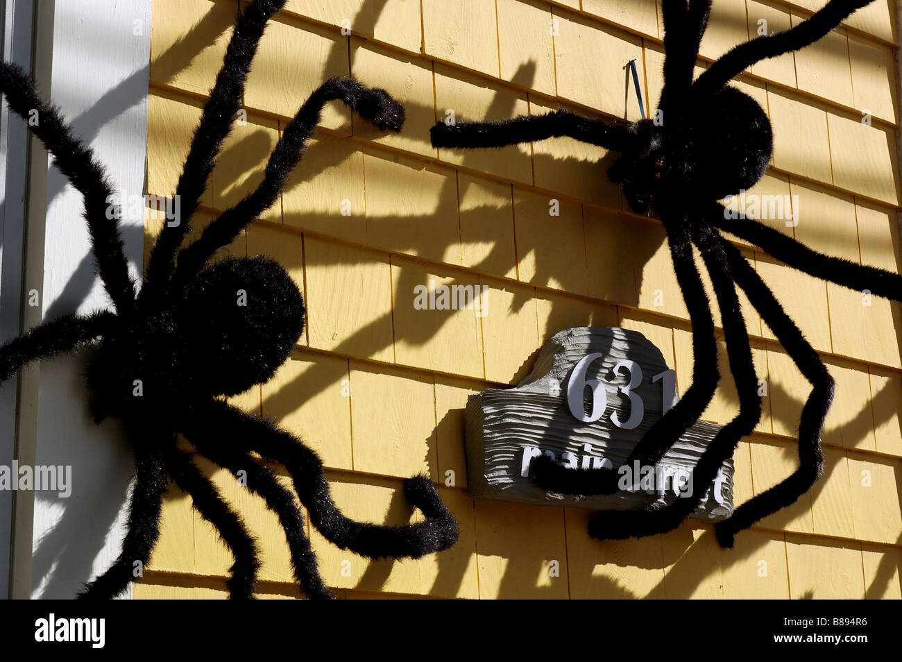 big furry spiders on the outside of a house as halloween decoration - Halloween Spider Decoration