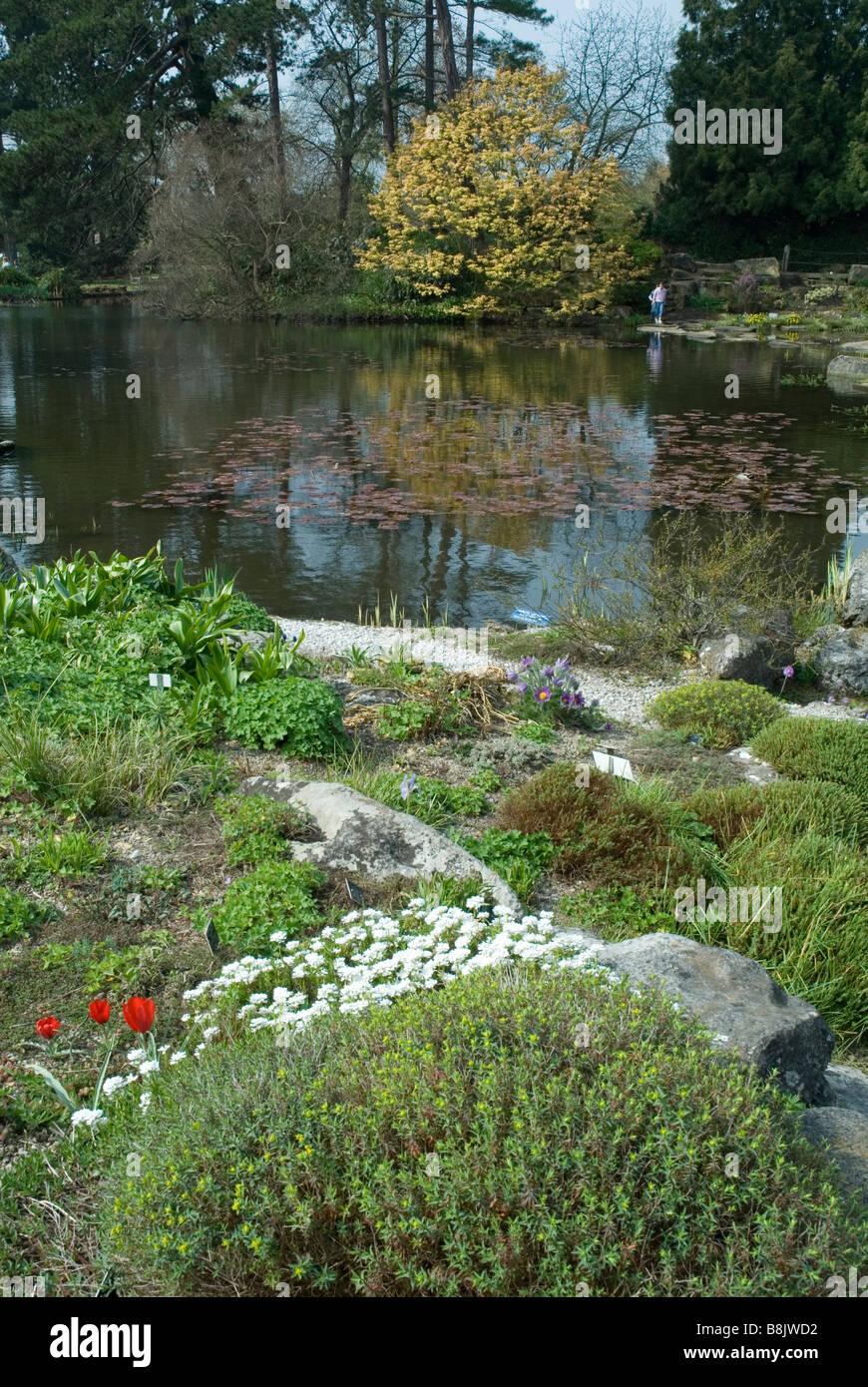 Cambridge University Botanic Garden England Stock Photo