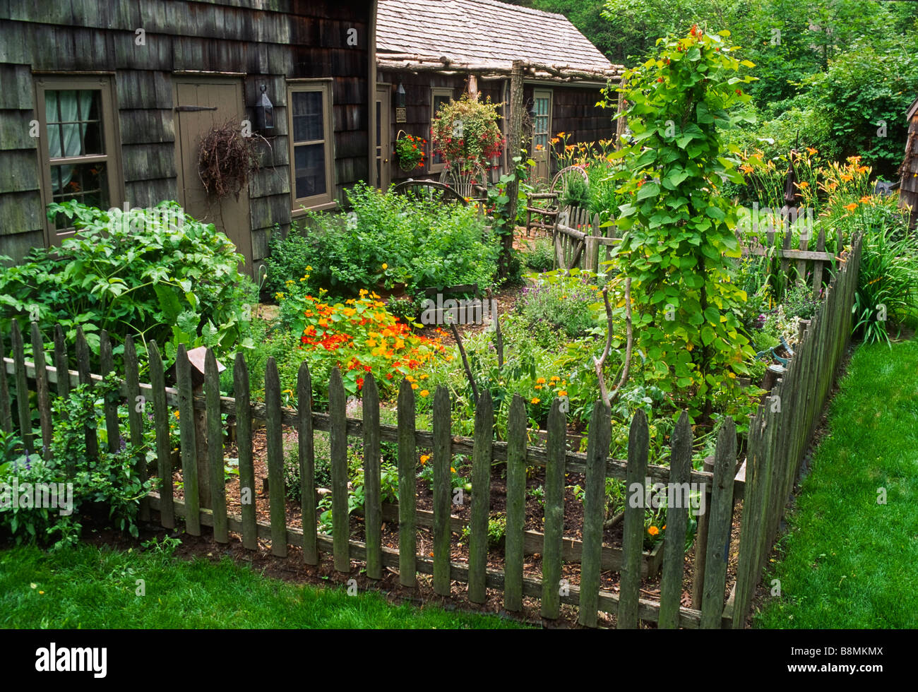 Attrayant This Colonial Style Dooryard Herb And Vegetable Garden Features  Historically Correct Plants And A Grapevine