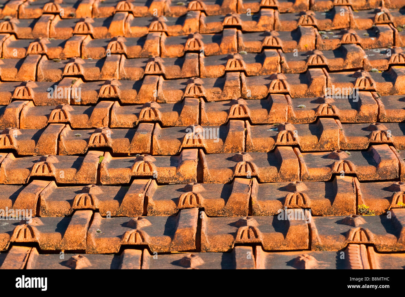 Decorative molded clay roof tiles on old house france for Buy clay roof tiles online