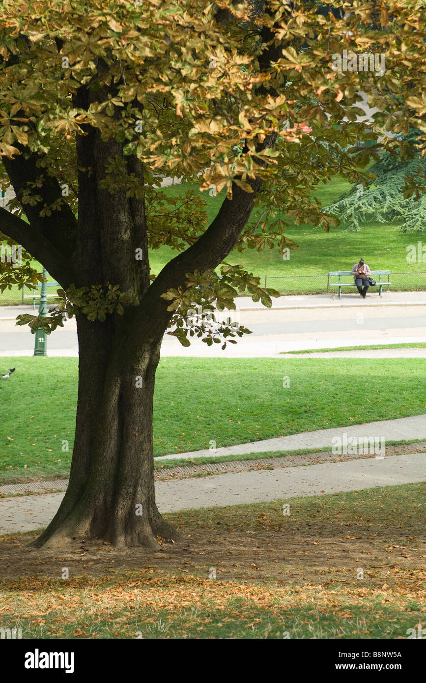 Park scene, person sitting on bench in background Stock Photo ... for Park Background With Bench  111ane