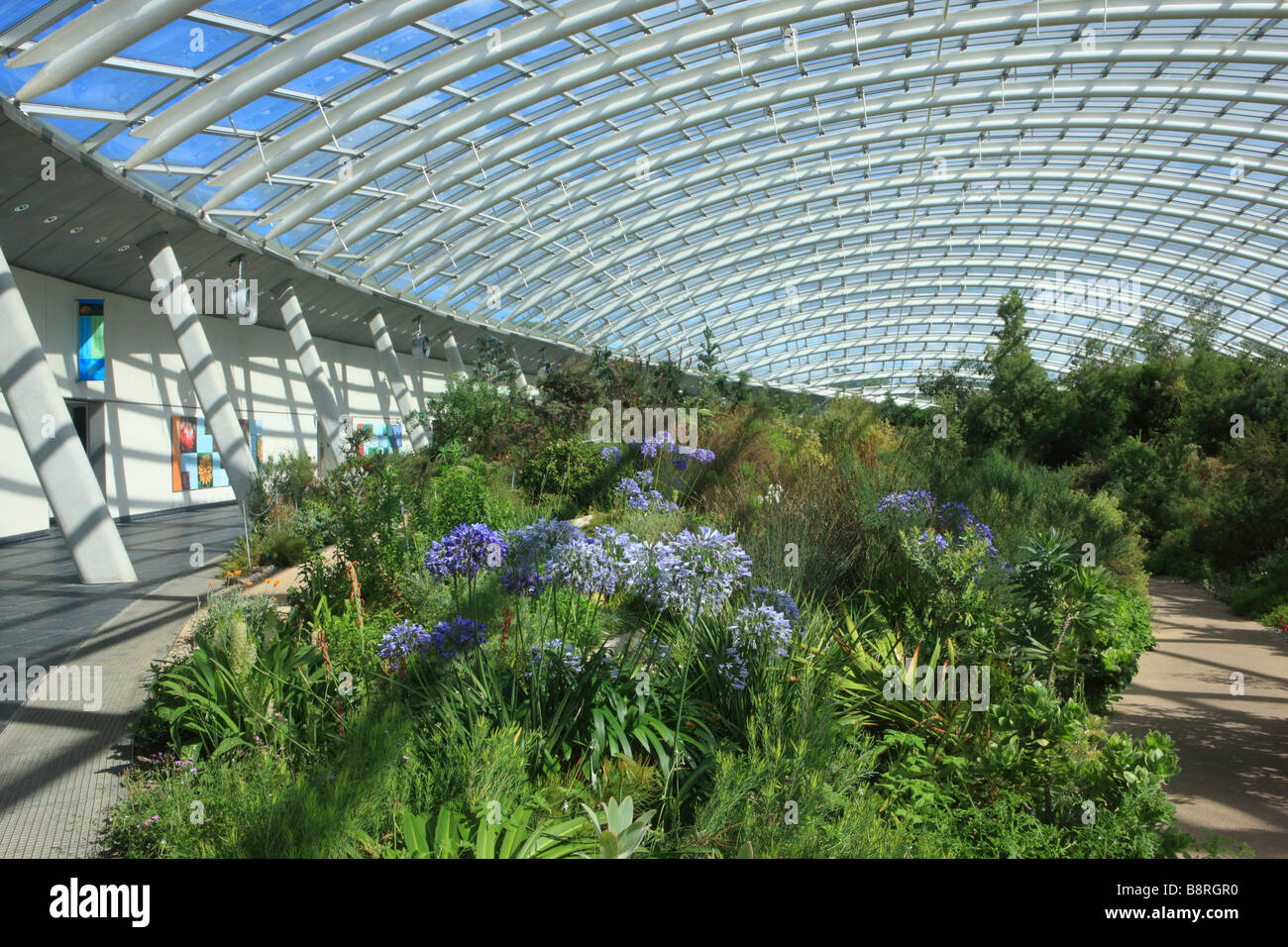The Great Glasshouse, National Botanic Garden Of Wales