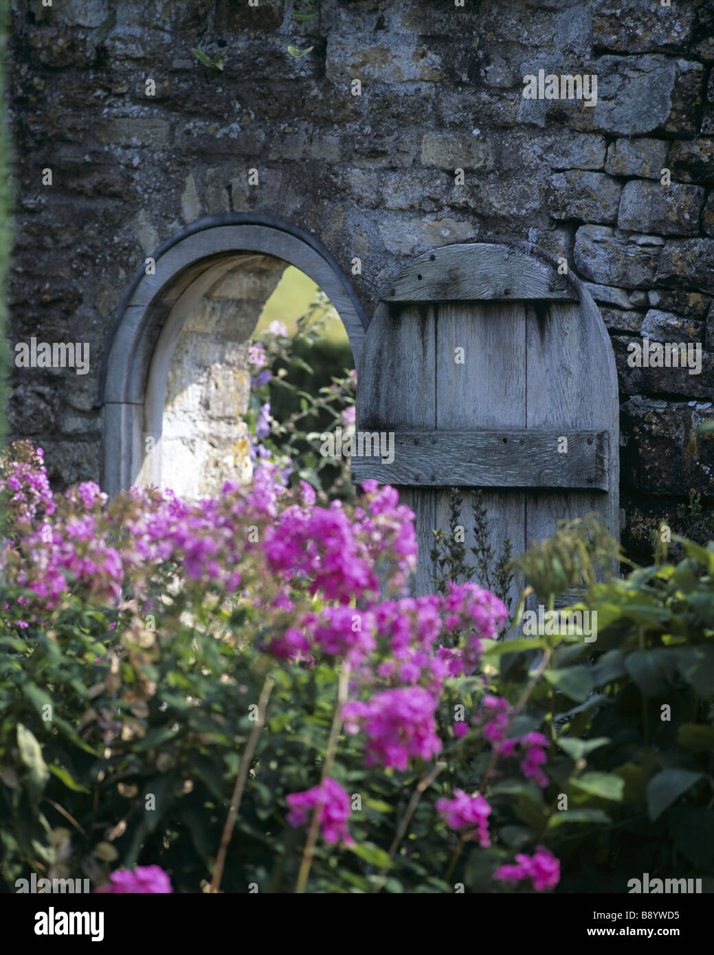 garden gate open in wall with pink perennial flowers in foreground phlox - Open Garden Decor