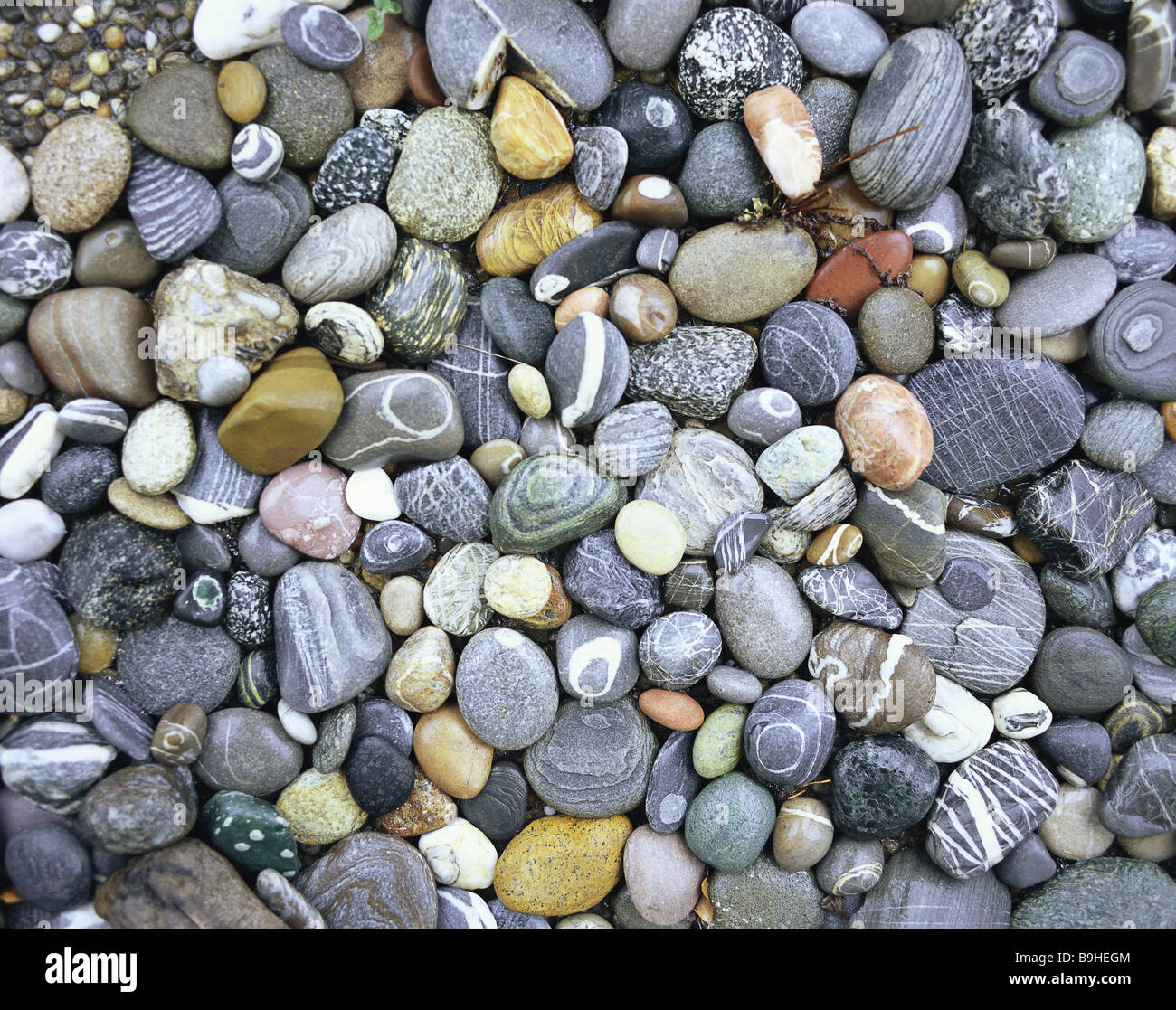 Pebbles pattern lines variety difference shingle stones for Small river pebbles