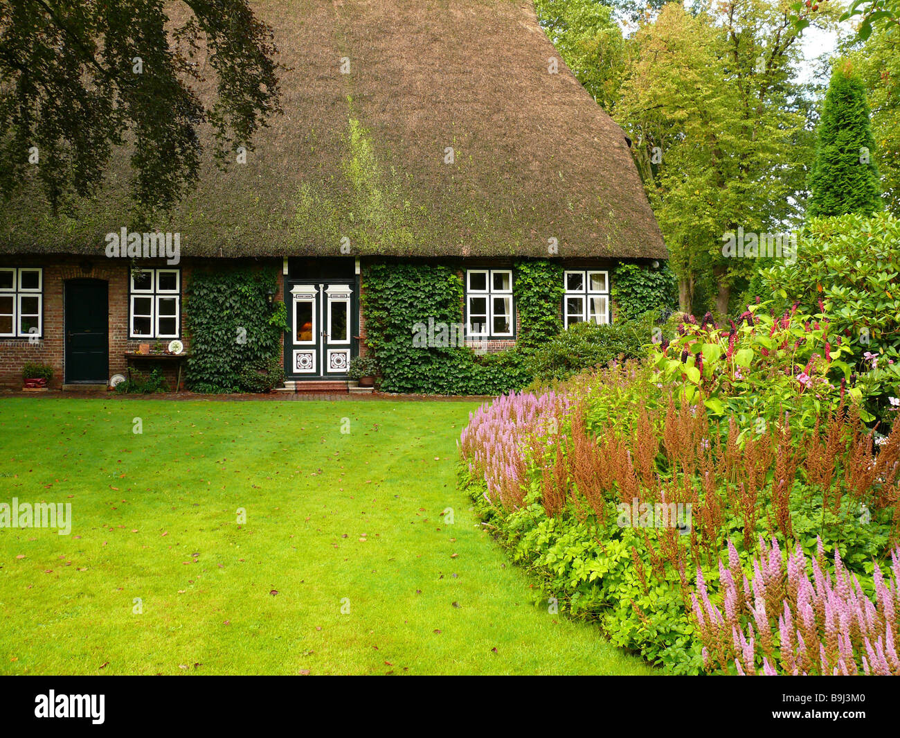 germany schleswig holstein eyrie thatched roof house garden summer stock photo royalty free. Black Bedroom Furniture Sets. Home Design Ideas