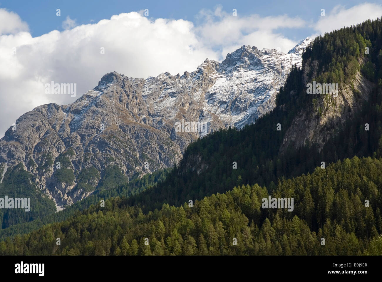 Mount Piz Zuort Metres Above Sea Level And Wooded Slopes In - Metres above sea level