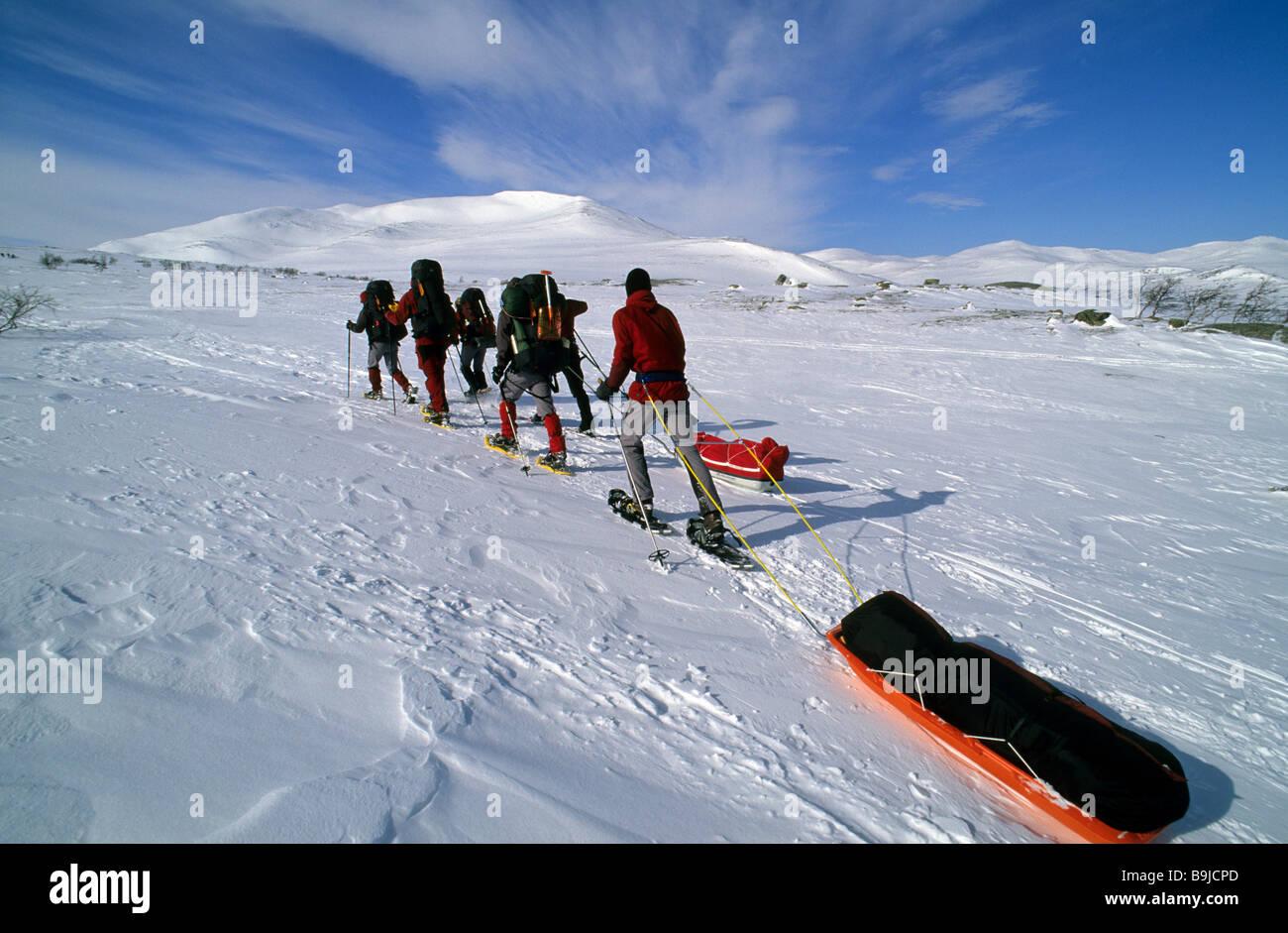 snow shoe hikers with pulka a transport toboggan at valadalen