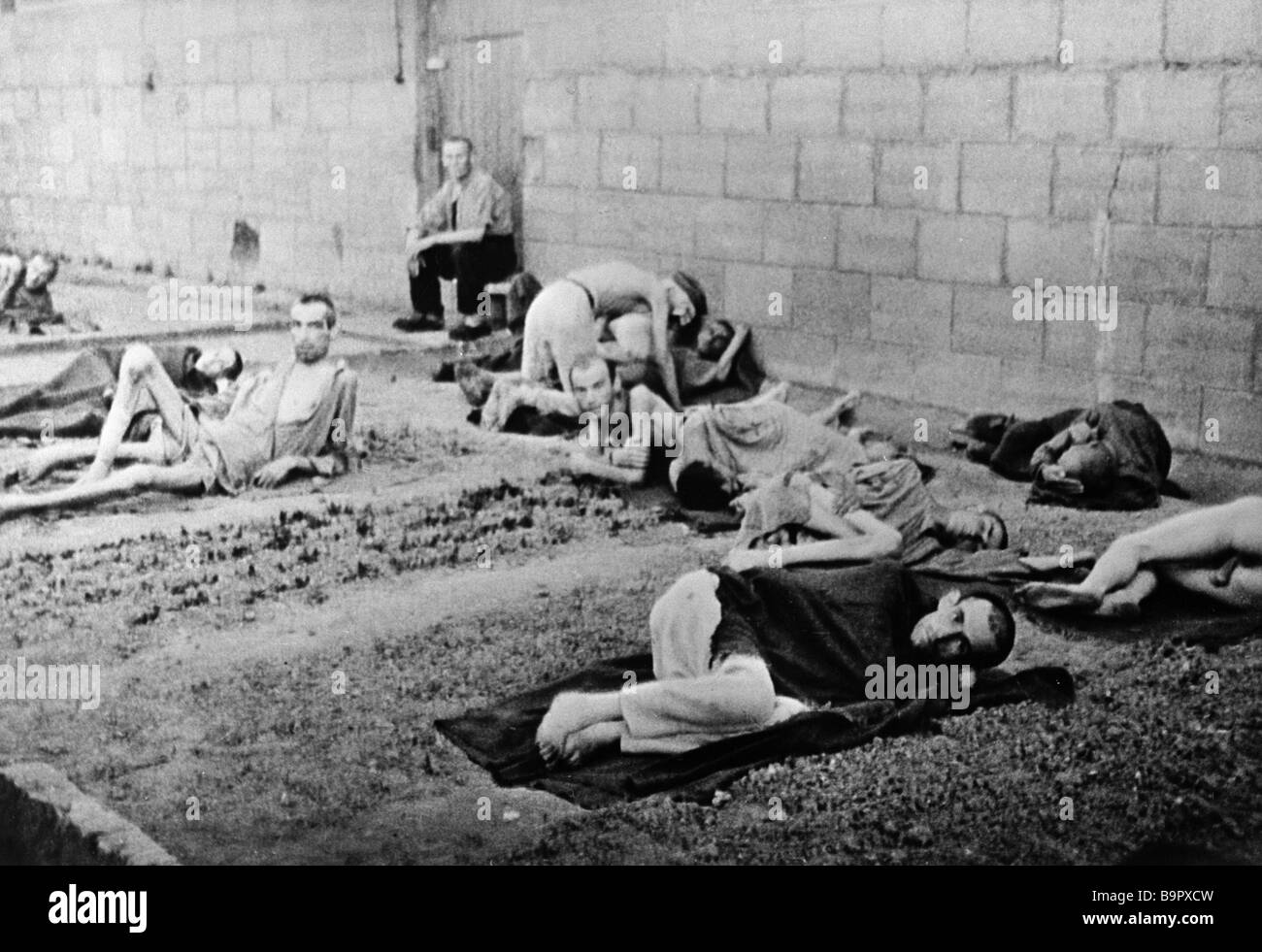 Emaciated inmates of the Mauthausen consentration camp ...