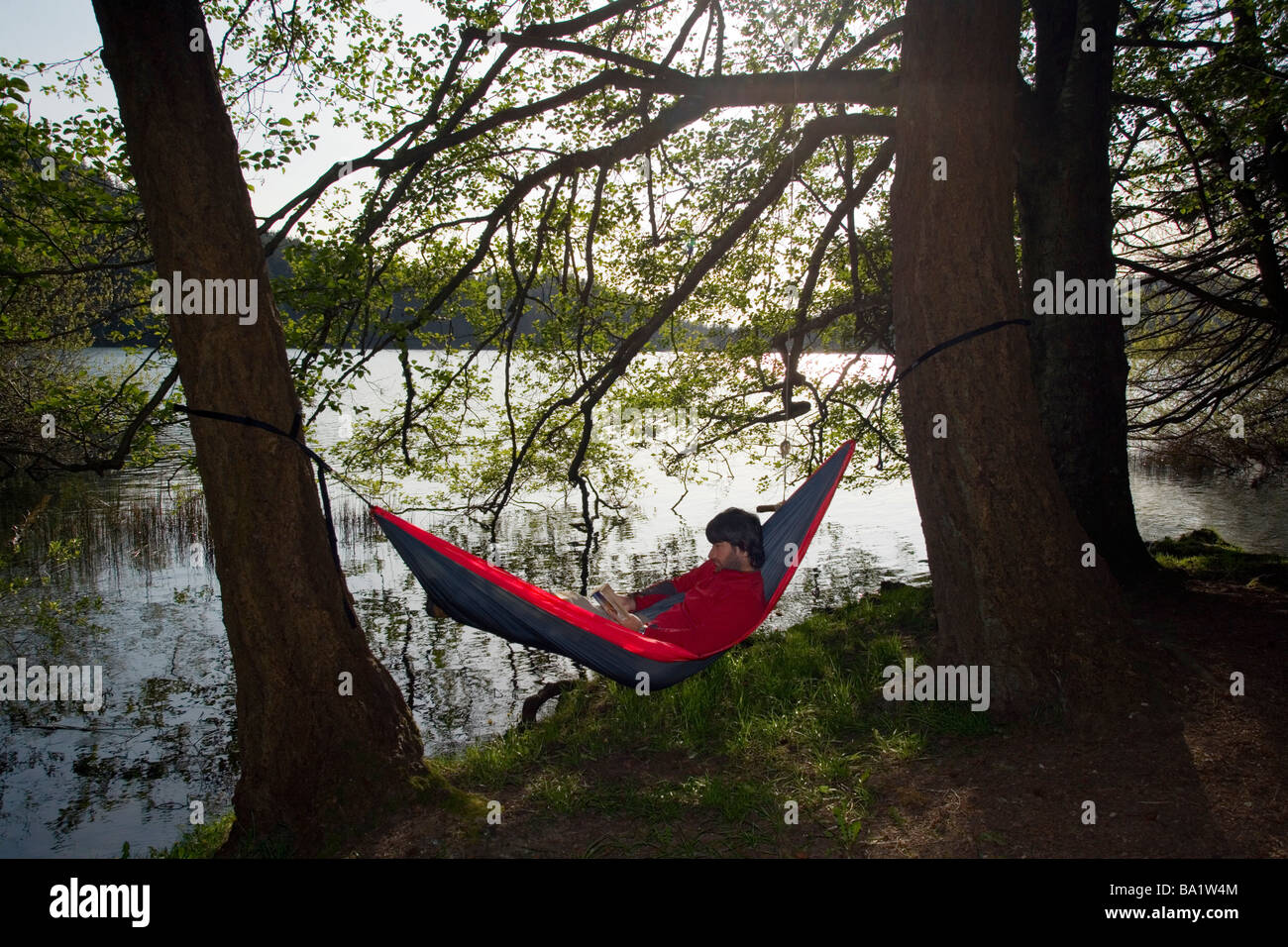hammock by cascade lake   moran state park orcas island washington hammock by cascade lake   moran state park orcas island      rh   alamy
