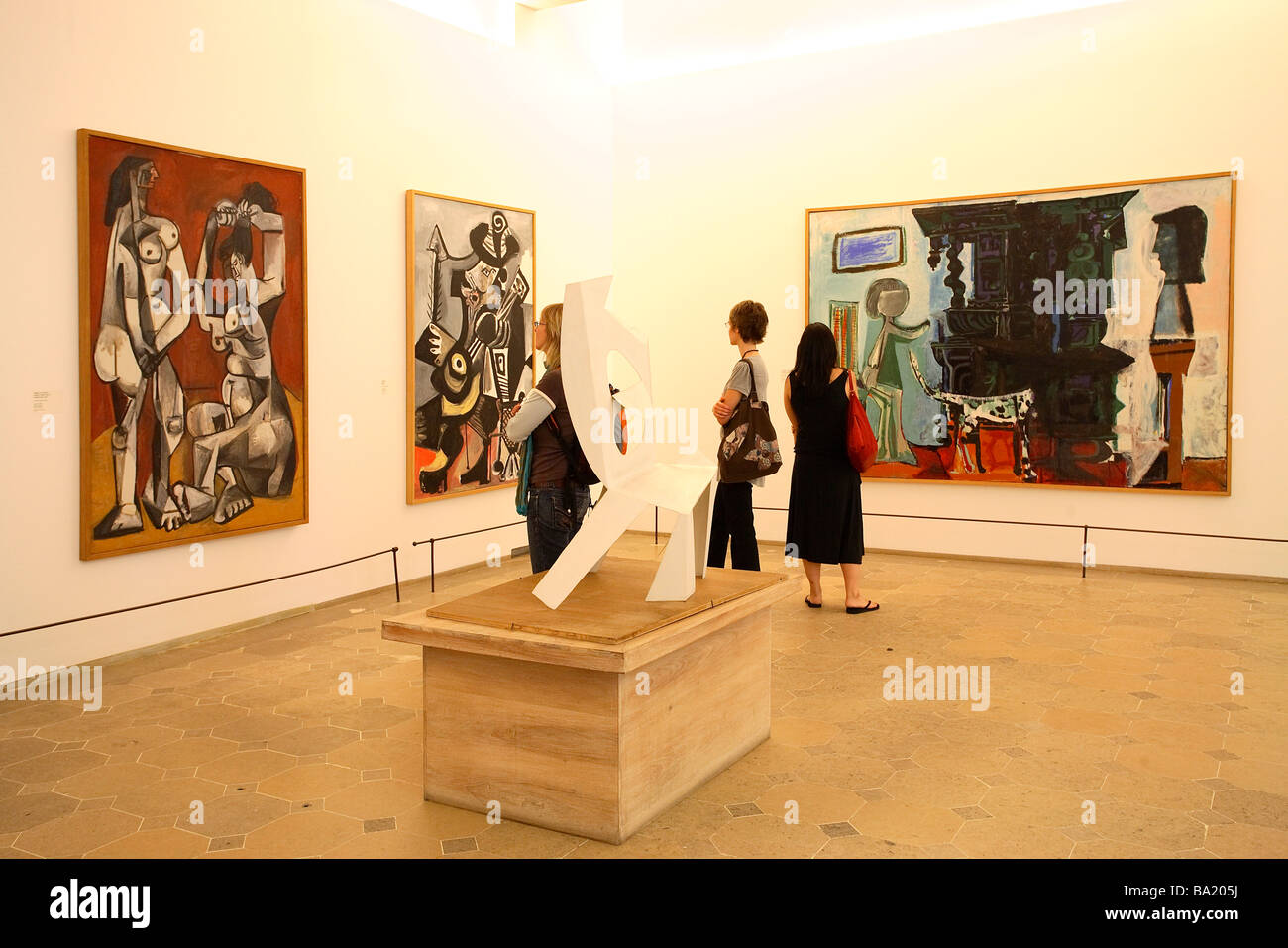 picasso museum paris painting exhibition stock photo royalty free image 23400990 alamy. Black Bedroom Furniture Sets. Home Design Ideas