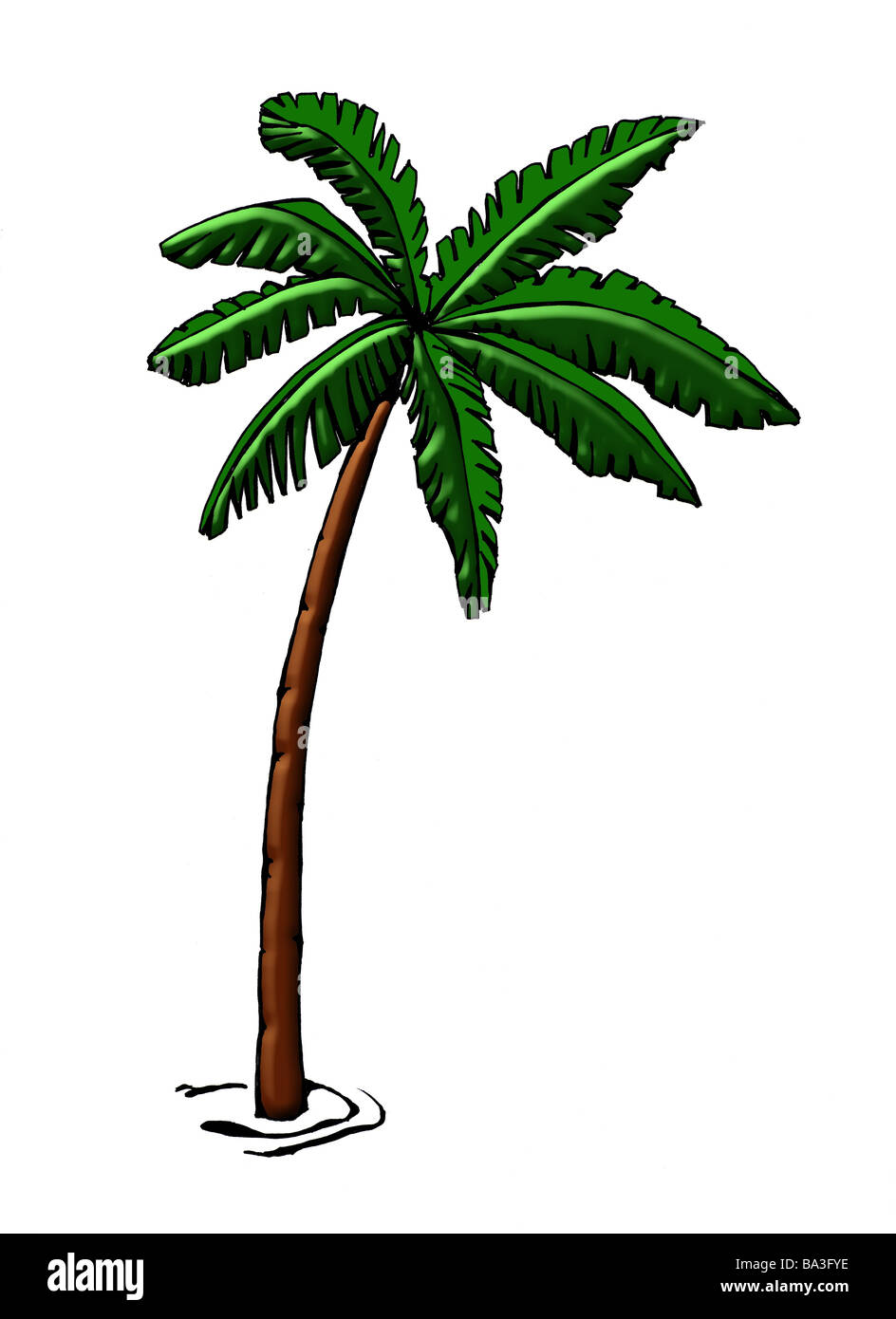 Illustration palm graphics drawing watercolor tree coconut-palm ... for Tree Drawing With Watercolor  587fsj