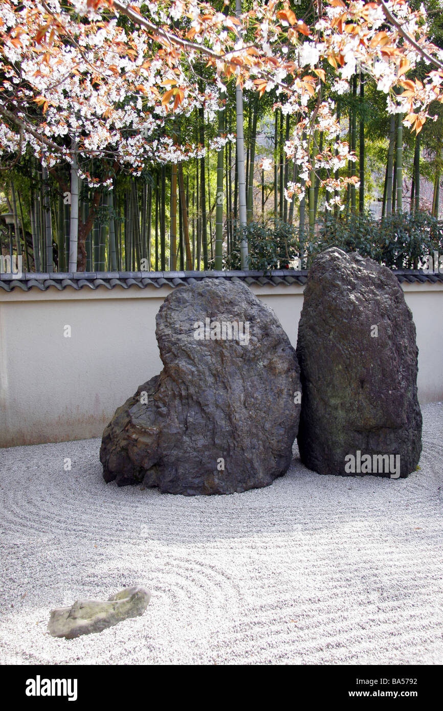 Japanese Zen Rock Garden With Spring Cherry Blossom And