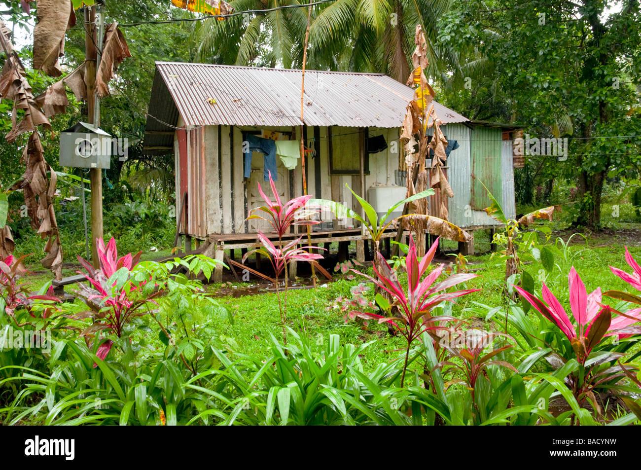 the modest pastel colored homes in tortuguero costa rica