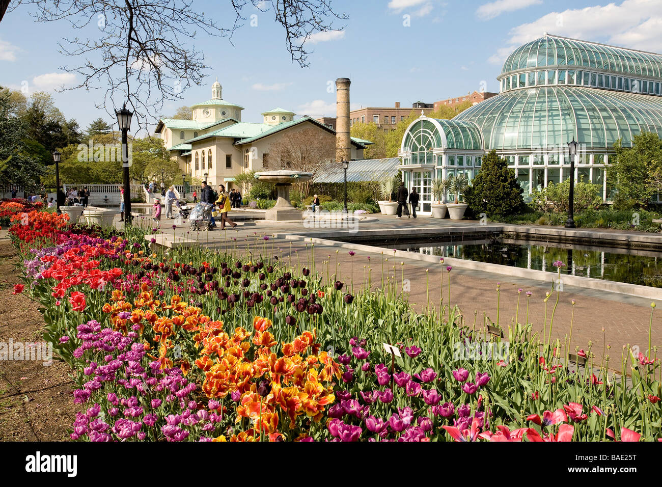Brooklyn Botanical Garden Corporate Membership Garden Ftempo
