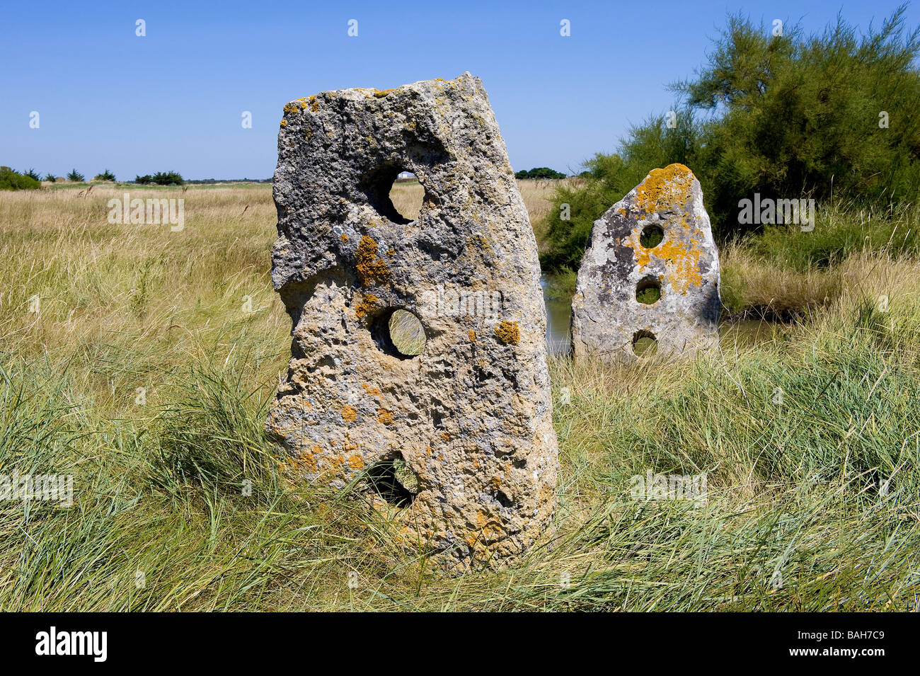 France Vendee Ile De Noirmoutier Esseppes Stones With