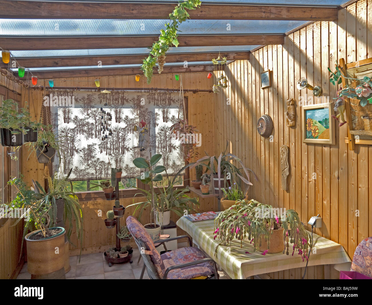 inside in the wintergarden house with many plants and pictures and