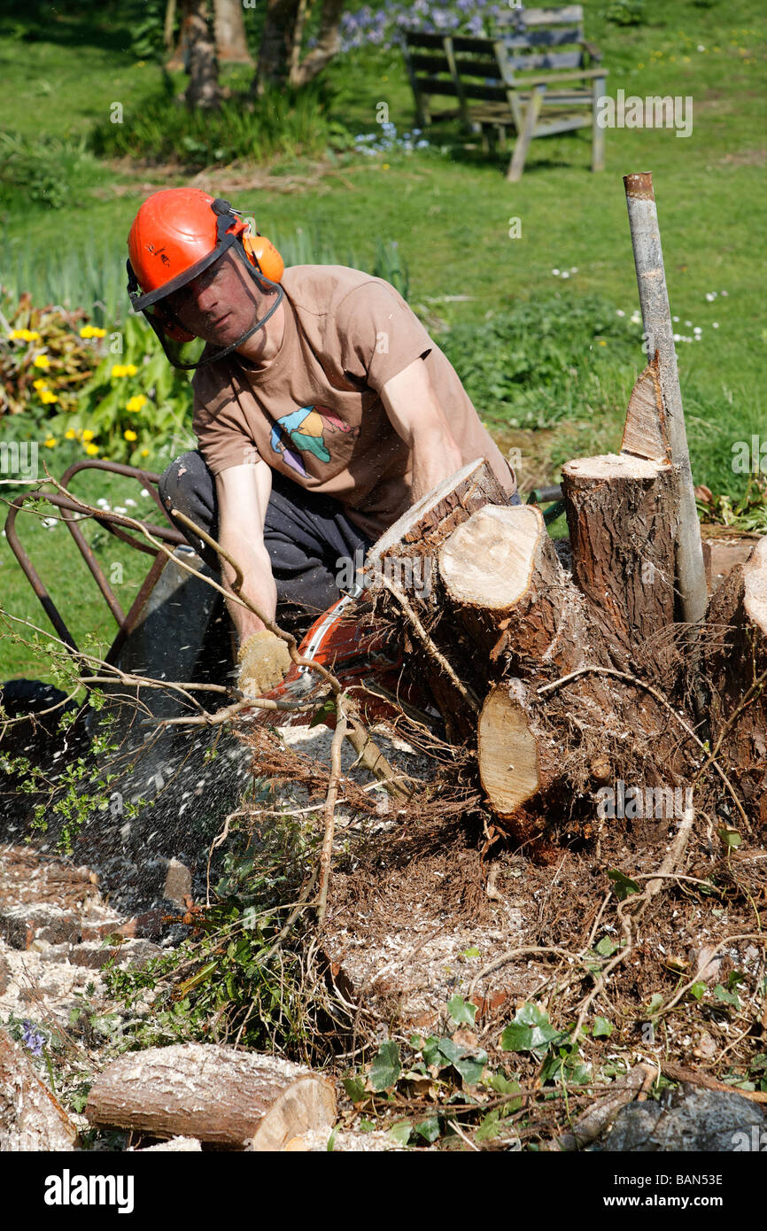 how to cut up a tree without a chainsaw