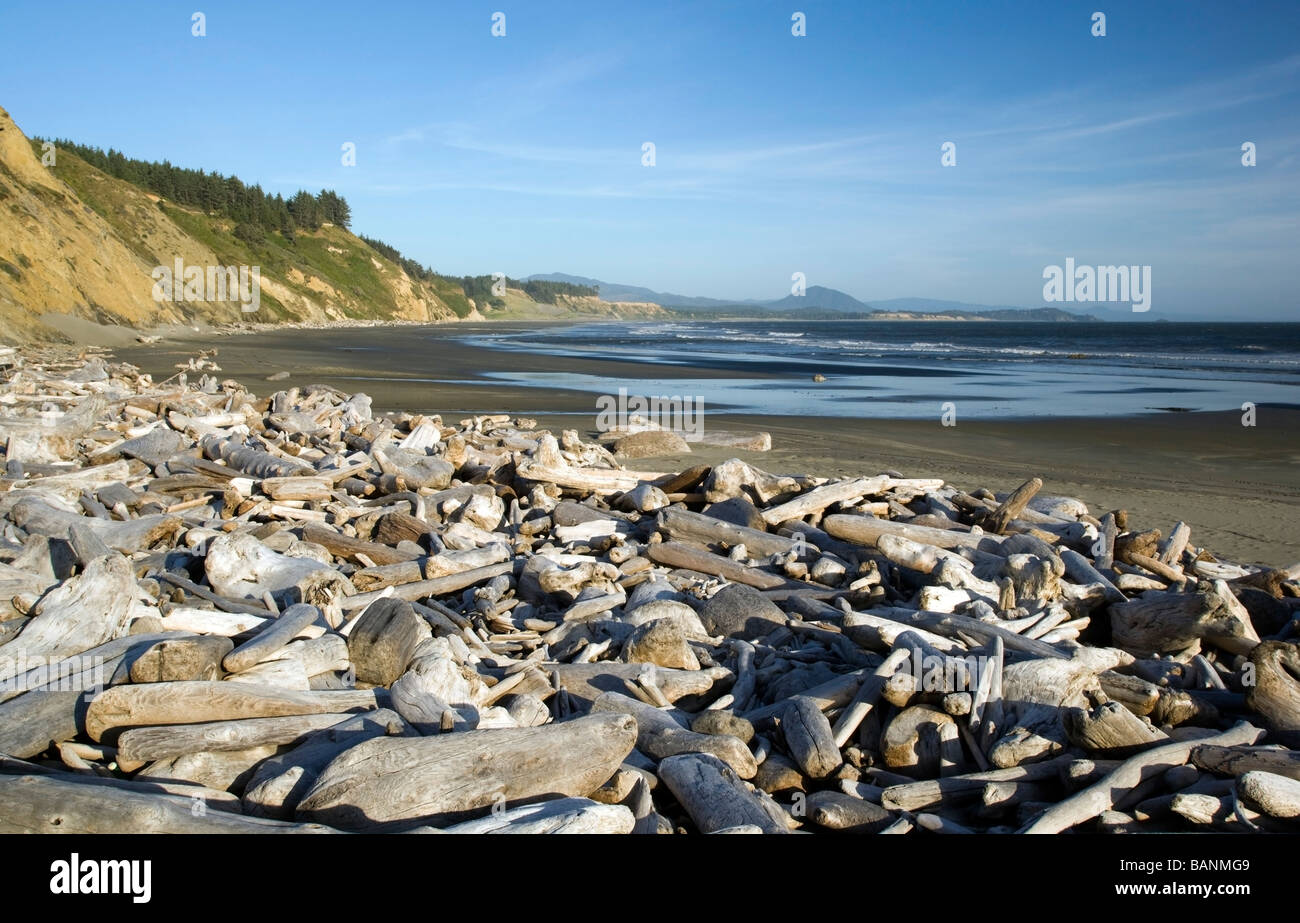 port orford online dating The friendly towns between port orford to brookings — along oregon's 60 miles of southern-most coastline — are looking for love from adventure-seeking hikers and bikers, campers and.