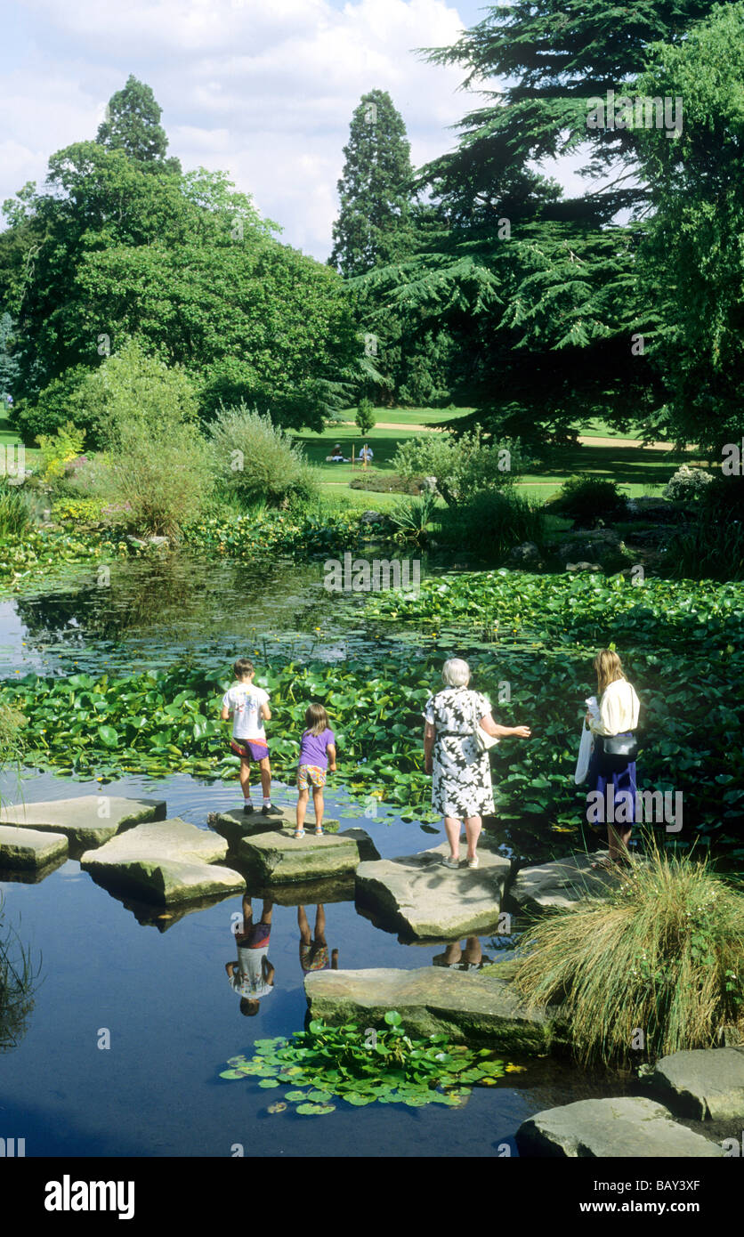 Personable Cambridge Botanical Gardens Garden Water Ponds Plants Aquatic East  With Glamorous Cambridge Botanical Gardens Garden Water Ponds Plants Aquatic East Anglia  England Uk People Visitor Visitors Stepping With Agreeable Garden Design Nottingham Also Good Pubs Near Covent Garden In Addition Horse Manure For Garden And Sunshine Garden Center As Well As Emmetts Garden Opening Times Additionally Gardens Norfolk From Alamycom With   Glamorous Cambridge Botanical Gardens Garden Water Ponds Plants Aquatic East  With Agreeable Cambridge Botanical Gardens Garden Water Ponds Plants Aquatic East Anglia  England Uk People Visitor Visitors Stepping And Personable Garden Design Nottingham Also Good Pubs Near Covent Garden In Addition Horse Manure For Garden From Alamycom