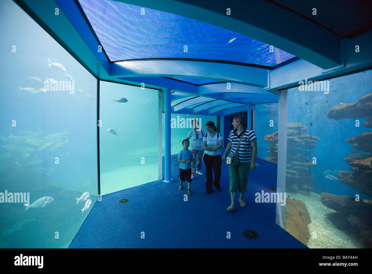 Family at Palma Aquarium, El Arenal, Playa de Palma, Mallorca Stock Photo, Ro...