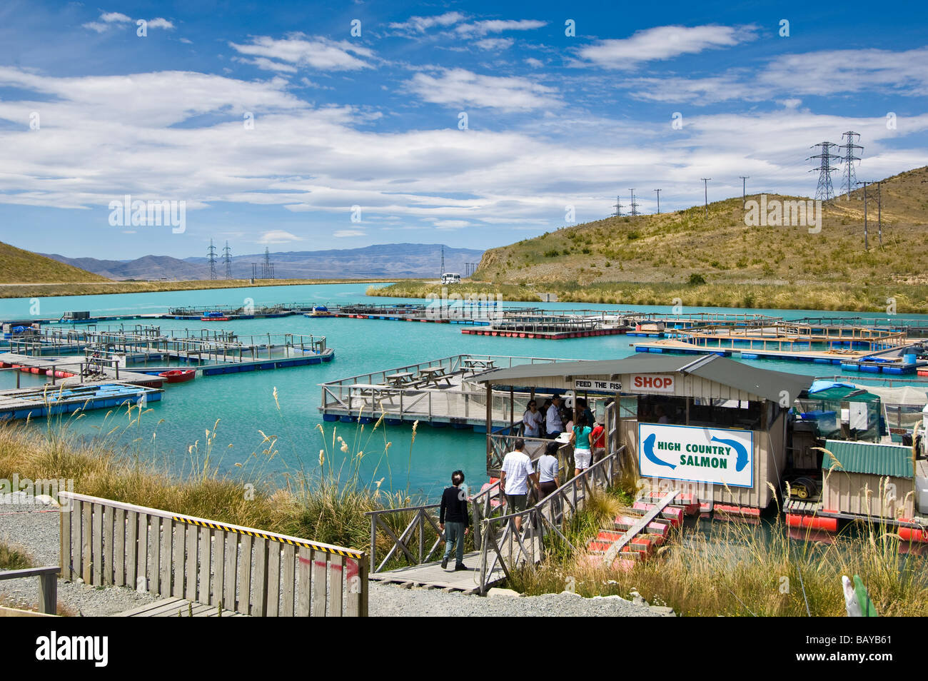 Salmon Farm New Zealand South Island
