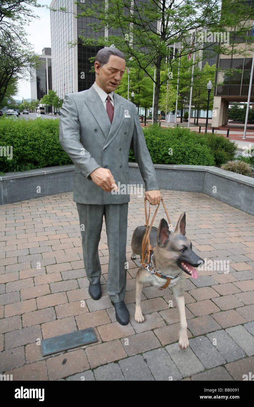 H Dog Training Nj