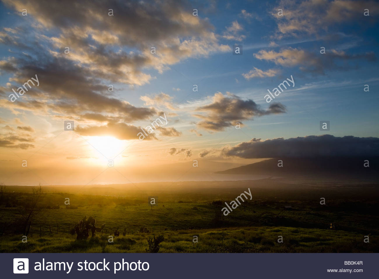 upcountry ranch sunset near kula with valley and west maui mountains on the island of maui in the state of hawaii usa