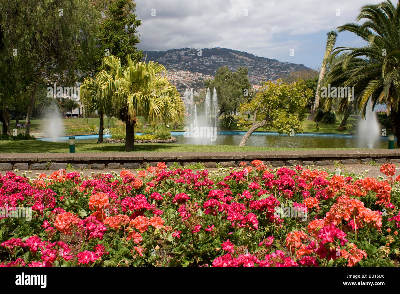 Municipal Gardens Funchal Madeira Seaside City Portuguese Island In The Mid  Atlantic Ocean