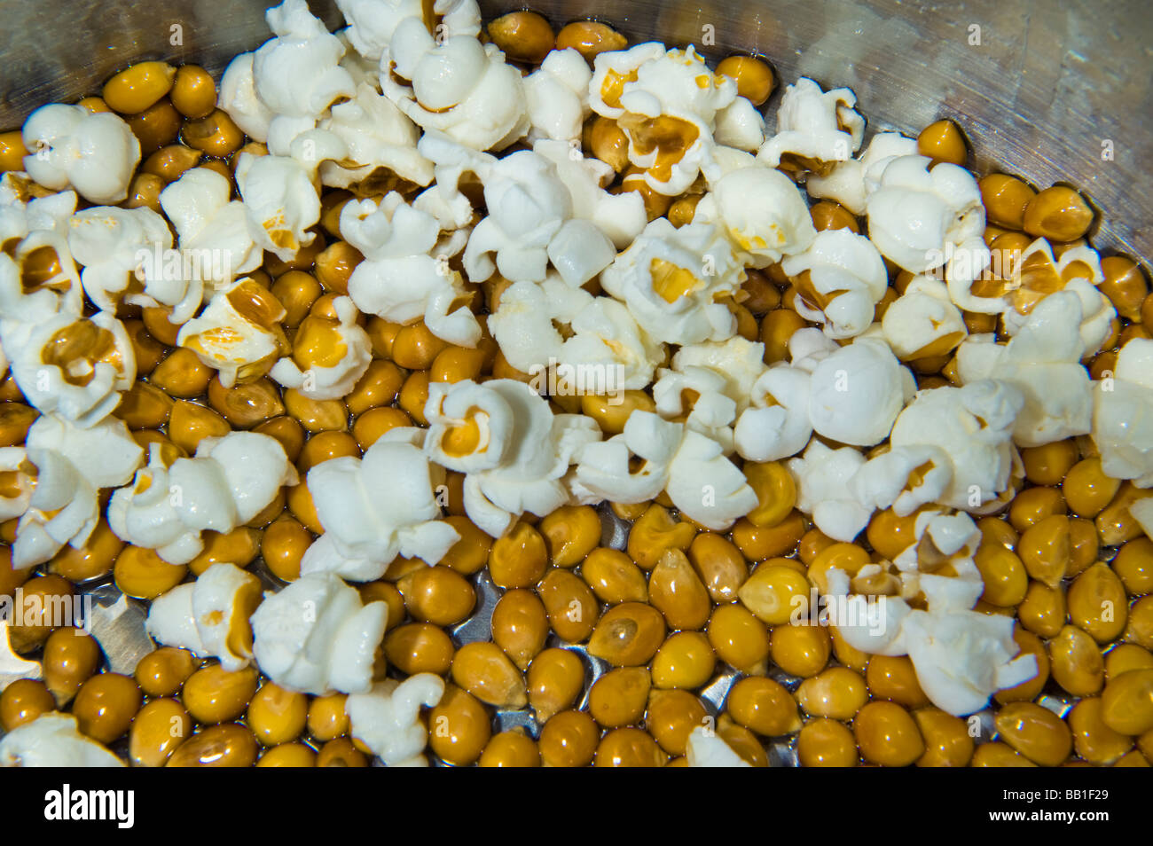 popcorn pop corn homemade make making oil pan plopp mais maize hot stock photo royalty free. Black Bedroom Furniture Sets. Home Design Ideas