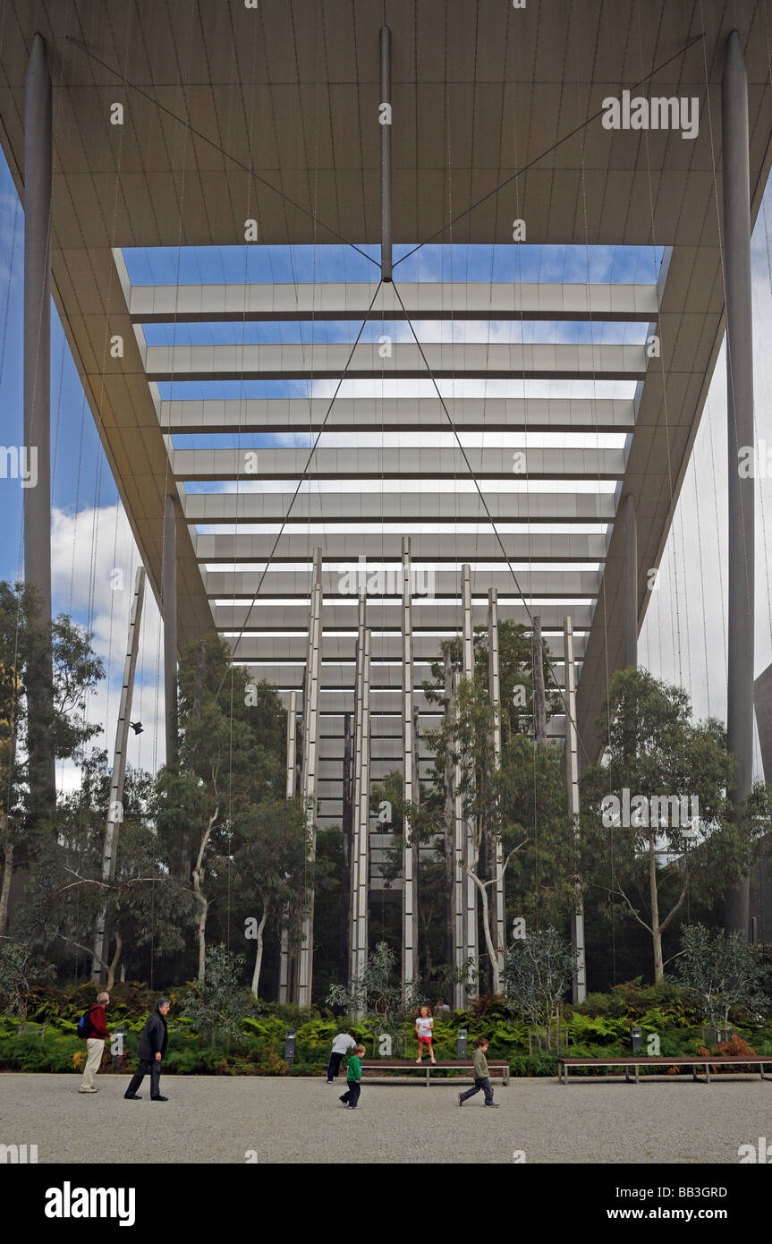 The modern steel and glass canopy over the Milarri Garden in Melbourne Museum Australia & The modern steel and glass canopy over the Milarri Garden in Stock ...