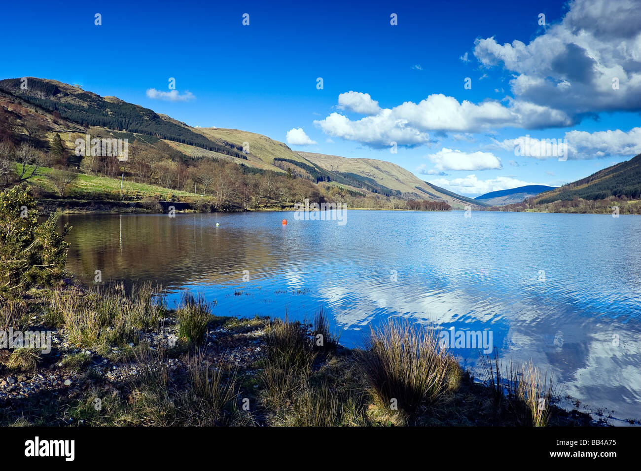 View Of Loch Voil Trossachs National Park Stirlingshire Scotland  Stock  Image