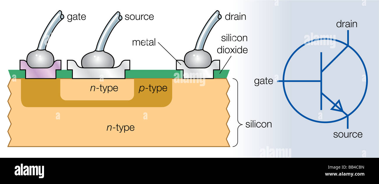 Cross section of an n p n transistor and its electronic symbol cross section of an n p n transistor and its electronic symbol biocorpaavc Images