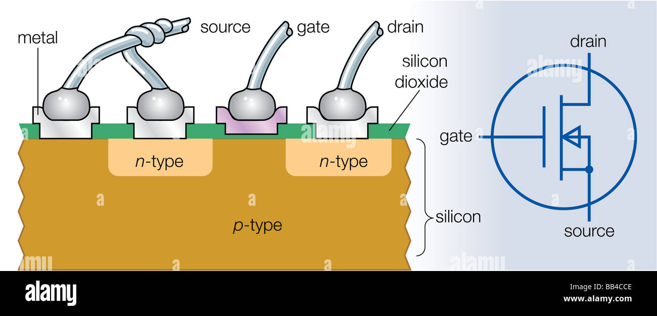 Cross section of an n channel metal oxide semiconductor field cross section of an n channel metal oxide semiconductor field effect transistor and its electronic symbol pooptronica Images