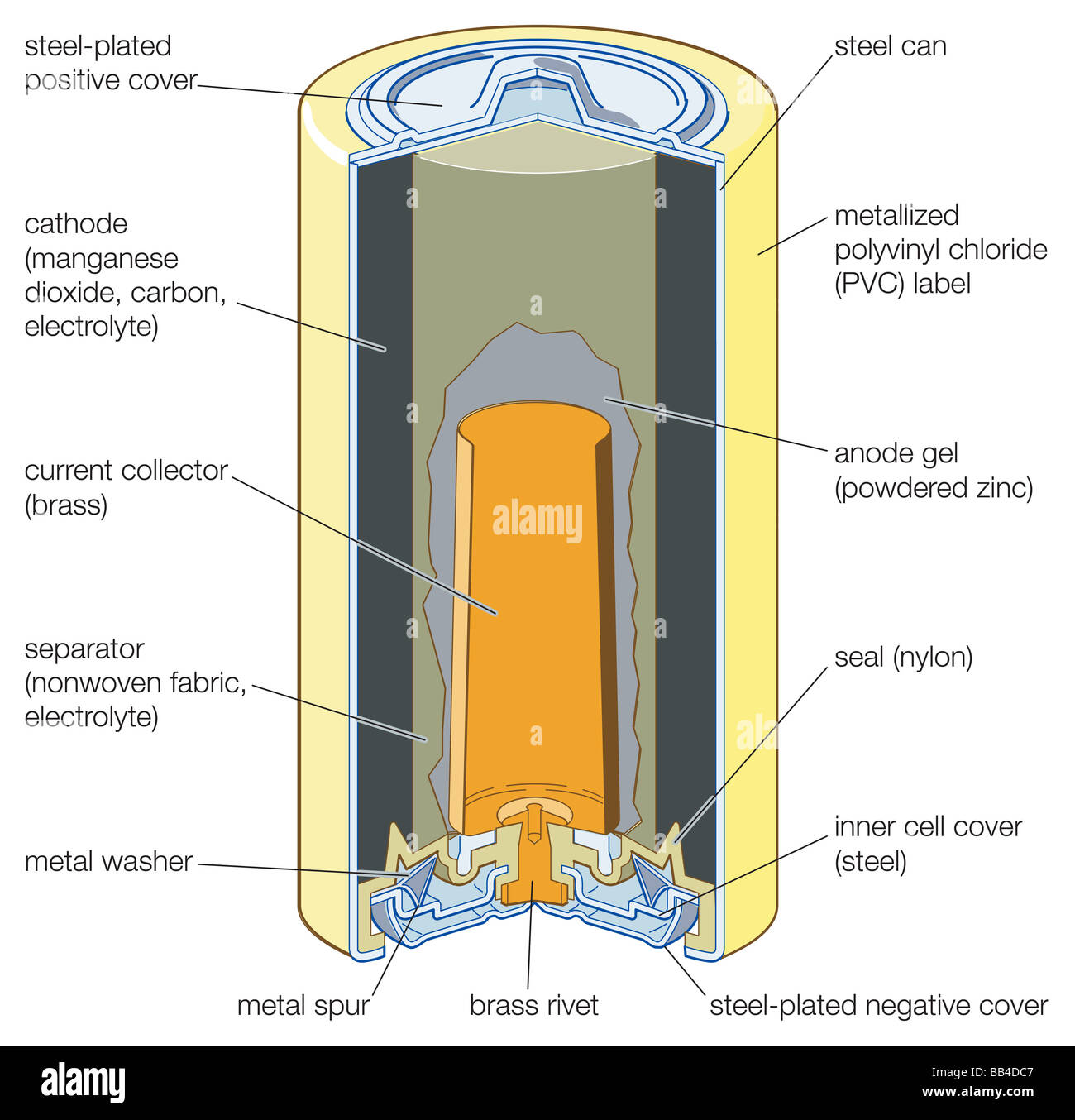 Crosssection Cutaway Diagram Dry Cell Battery Stock Vector Auto Of A View An Alkaline