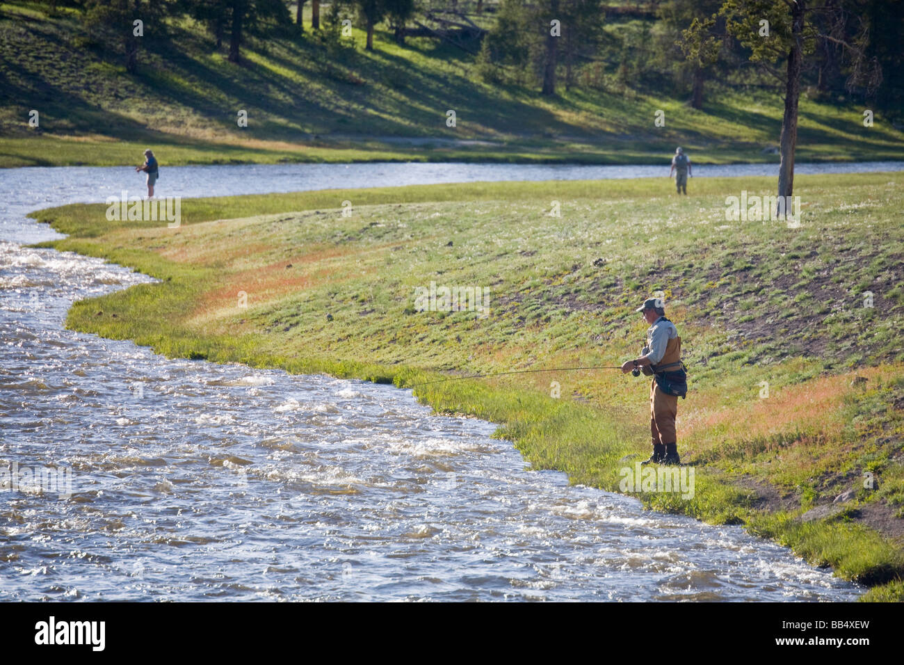 Wy yellowstone national park fly fishing in the for Fly fishing yellowstone river