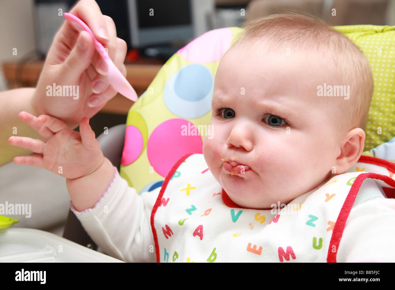 8 month old baby girl being spoon fed stock image