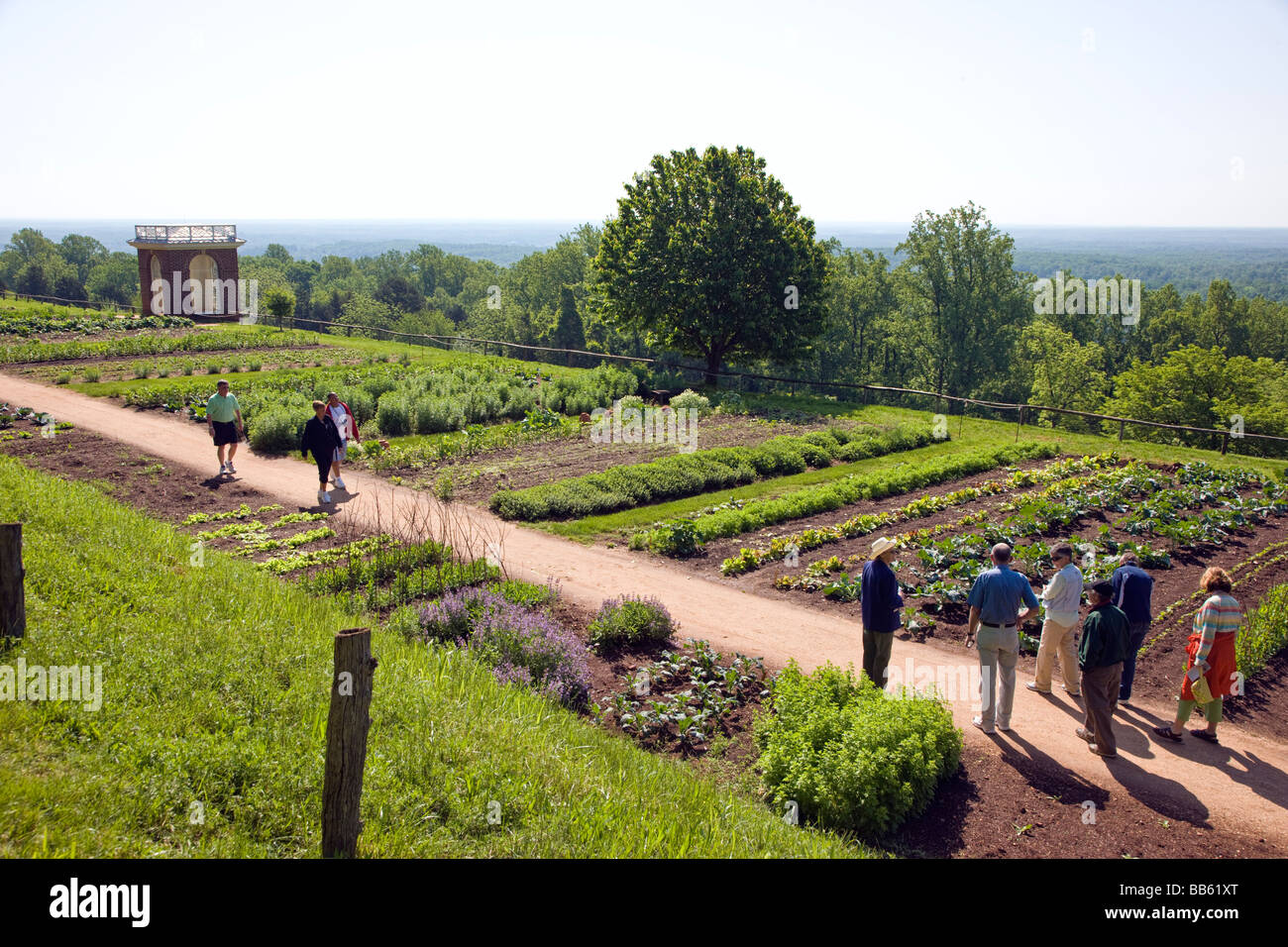 Tourists Visit The Vegetable Flower Gardens At