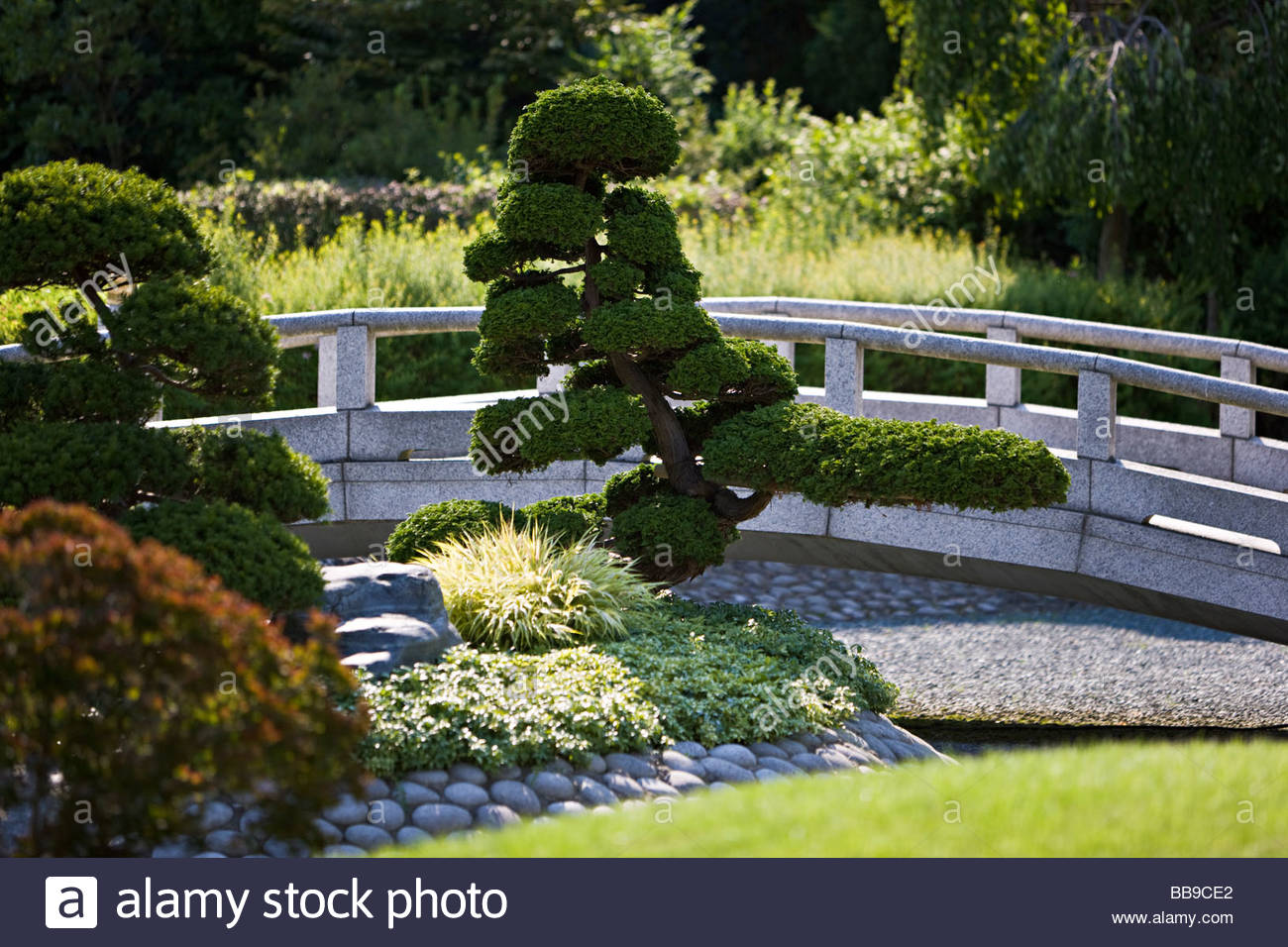 Japanese Garden Stone Bridge japanese dry garden stone bridge evergreen trees pruning shaping