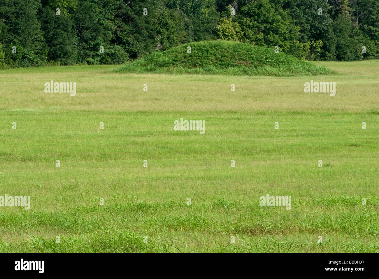 Pharr Mounds-- National Register of Historic Places Indian Mounds ...