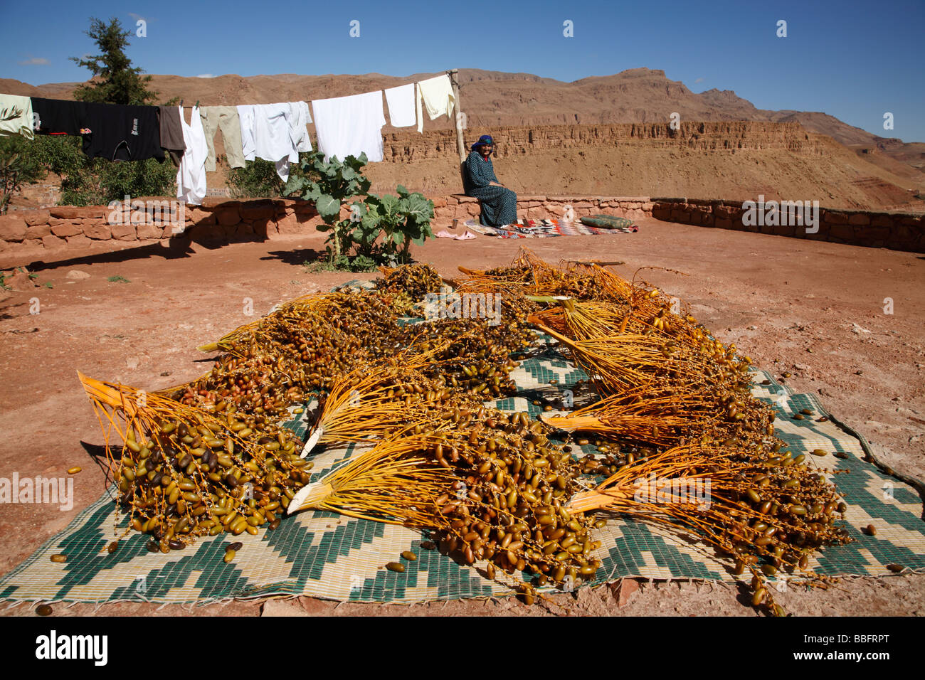 africa north africa morocco tinerhir atlas mountains dates