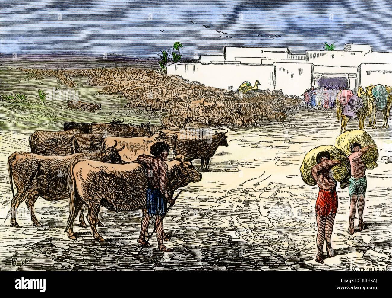 Joseph Of Egypt Receiving Cattle In Exchange For Bread
