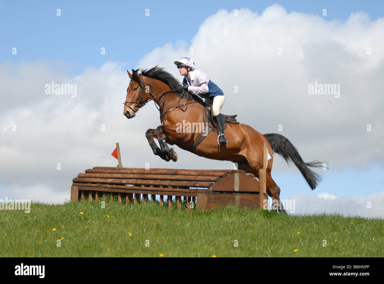 Horses jumping cross country